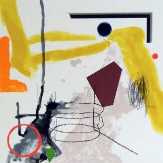 Litografía_Joaquín_capa_colores_flotando_Arte_contemporaneo