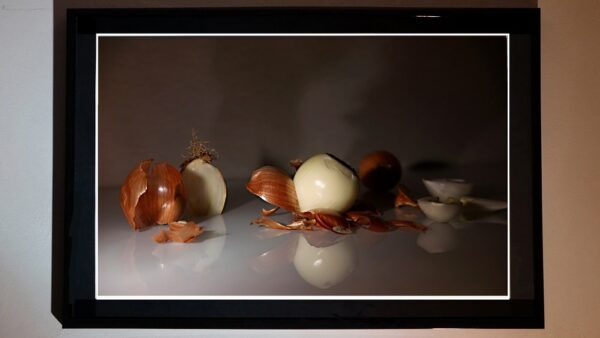 Fotografía Artistica, Cebollas Chema Rivas